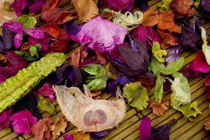 Tørrede pressede blomst håndværk