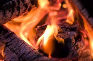 Hvad er fordelene ved træ aske?