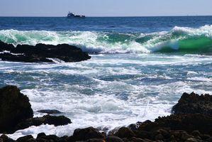 Sådan Sammenlign modeller af den skarpere billede Ioniske vind