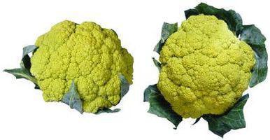 Ulige typer af Hybrid grøntsager