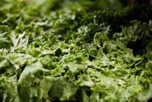 Pesticider For salat