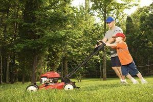 Min græsslåmaskine ikke vil starte og engang gøre ikke en støj