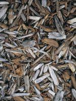 Hvordan man laver træ barkflis