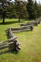 Træ hegn med termitter
