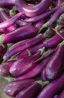 Hvordan man dyrker aubergine i Australien