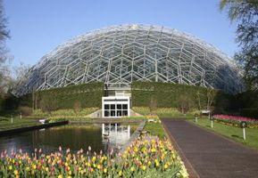 Sådan får du gratis eller billige billetter til Missouri botanisk have