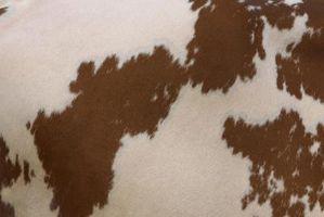 DIY ko hud tæppe