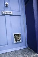 Hvordan man laver en hjemmelavet Kitty dør