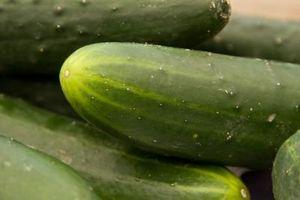 Hjemmelavet fungicid for meldug på agurk