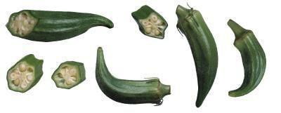 Hvordan man laver sund Okra planter producerer