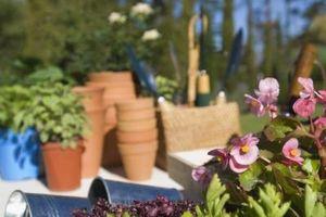 Hvordan man laver uden for Decor omkring blomsterhaver dig selv
