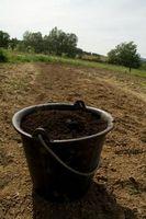 Sådan Transplant planter i Jiffy Pellets
