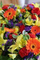 Sådan laver du din Vase af friske blomster ser semi-professionelle
