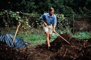 Sådan kompost havgræs og tang