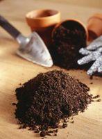 Hvordan man laver potning jord blanding med komposteret gødning, muld og Sand