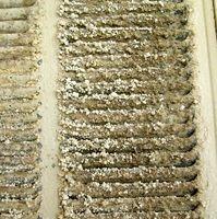 Hvordan at rengøre Master køler Eavaporative puder