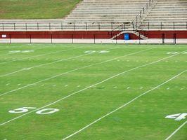 Typer af græs anvendes på lokale fodboldbaner