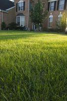 Hvordan til at grave dit græs til en Sprinkler