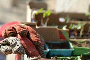 Kompostering og kommoder