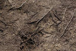 Hvordan du ændrer den kemiske sammensætning af jord