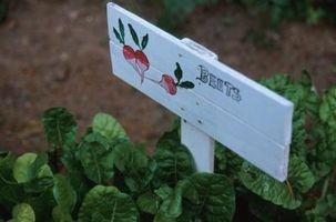DIY haven håndværk