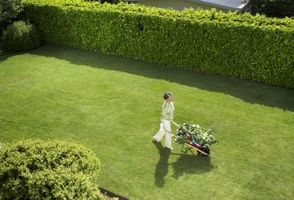 Moderne udendørs privatliv ideer