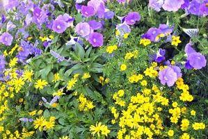 Hvordan du ændrer sprinklere for et blomsterbed