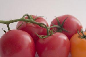 Hvordan at dyrke økologiske fødevarer for sundhed