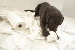 Hvordan man opbygger en toiletpapir Holder med flere ruller