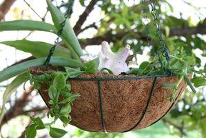 Plante-gødning Guide