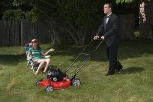 Hvordan man kan ansætte Lawn Care Services