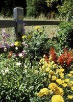 Sådan Decorate med Primitive land blomsterbede