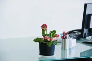 Hvordan man laver et reb plante indehaveren