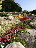 Seaside Garden ideer