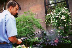 Sådan bruger du klar-til-Spray samlede Kill græsplæne ukrudtsmiddel