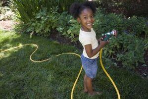 Hvordan til at vande planterne med godt vand