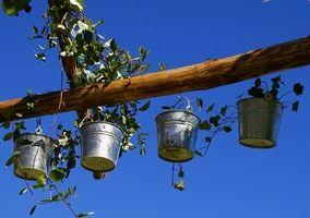 Hvordan du kan genbruge til Container haver