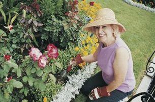 Hævet blomsterbede ved hjælp af sikringsanlæg klipper