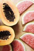 Tips til dyrkning vandmeloner