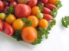 Over vandes tomatplanter