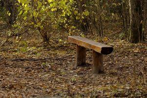 Hvordan man opbygger en bænk fra et Gran træ