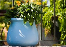 Tips til rengøring af plast urtepotter