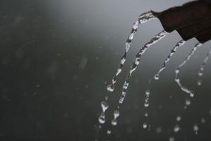 Er det ulovligt at Have regn tønder i staten Washington?