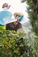 Hvordan man kan spare badevandet til haver