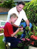 Ideer til at redesigne gamle blomsterbede