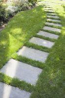 12 måned tip til Lawn Care