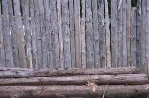 Hvordan til at landsætte cedertræ