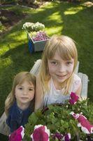 Hvordan til at plante en have med børn