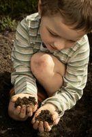 Hvor ofte bør du jord Test en køkkenhave?
