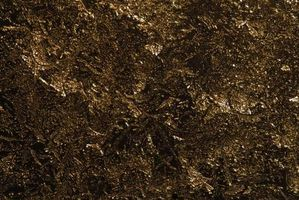 Hvad der forårsager pottemuld til at vokse skimmel?